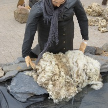 washing the wool