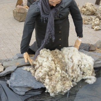 washing the wool
